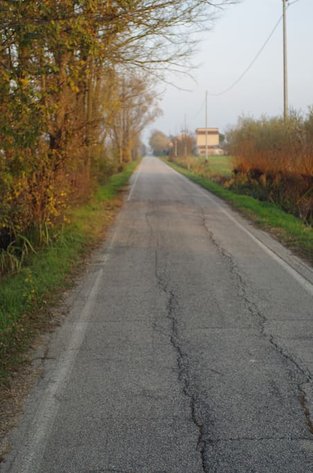 Road to the Center of Crespino