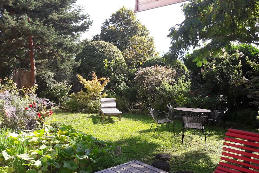 Jardin devant cuisine