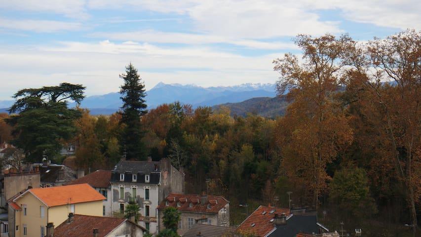 Vue imprenable sur les Pyrénées ! - Pau - Flat