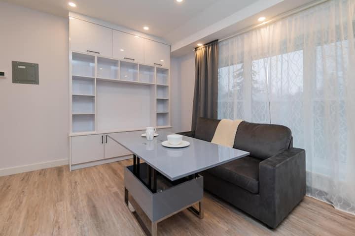 Luxury apartment in mid-Toronto