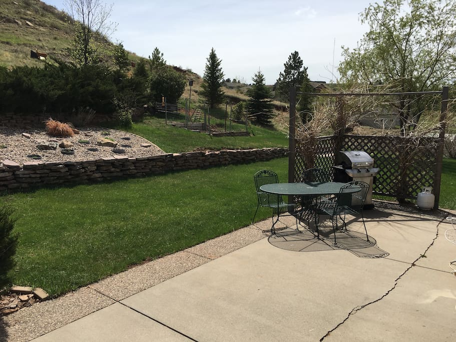 Back Yard Patio with Grile