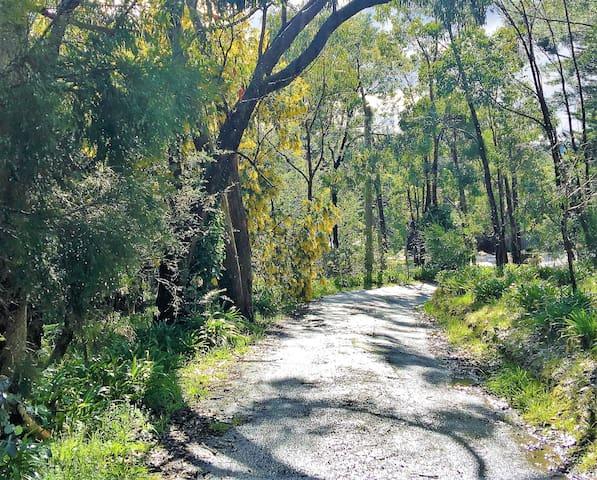 TreeTops Visitors Local Area Guidebook