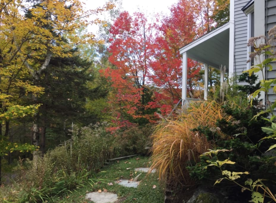 The colors of autumn are just one more reason to visit Taft Brook Rd.