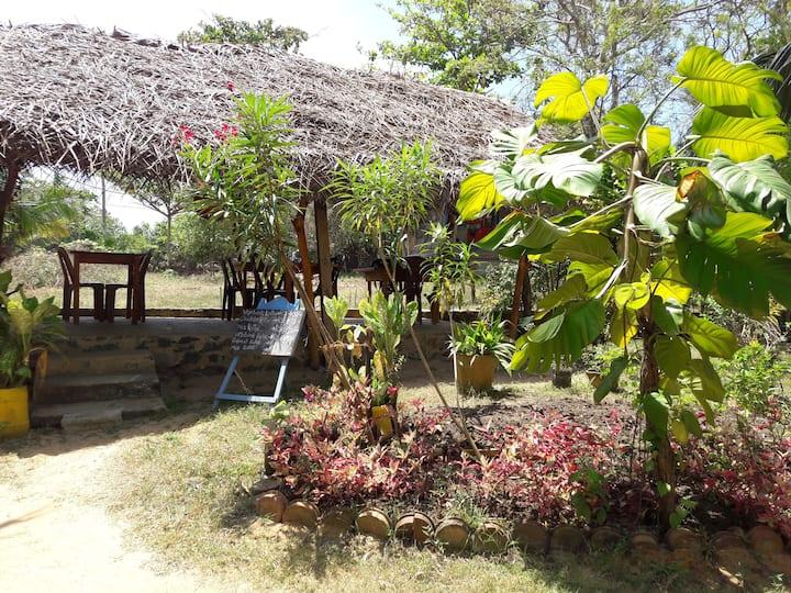 Natural cabanas and rooms near beach