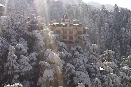 The Bodhi Tree B&B | Junior Suite - 西姆拉(Shimla) - 住宿加早餐