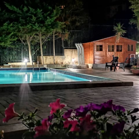 Domi holiday home plus - piscina
