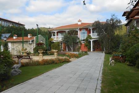 The villa of your dream