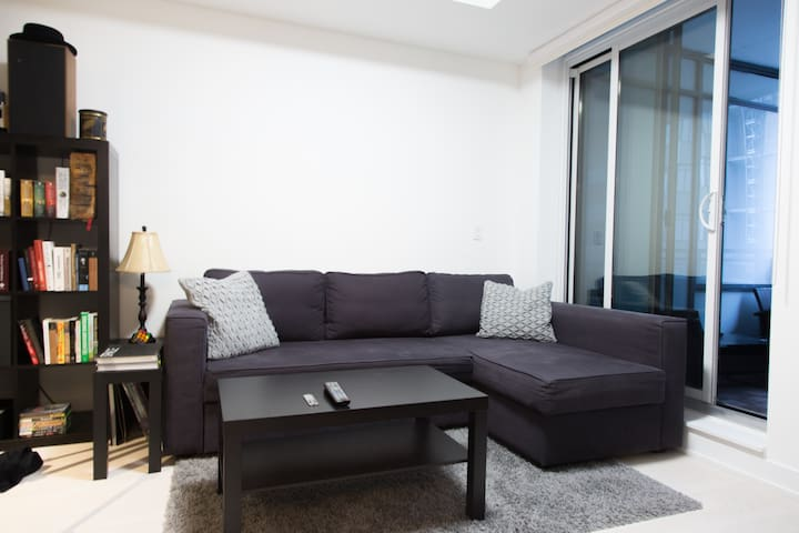 Common space with large sofa (bed) with chaise lounge.