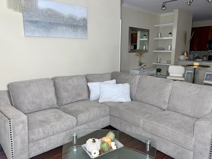 Luxury Apartment minutes away from downtown.