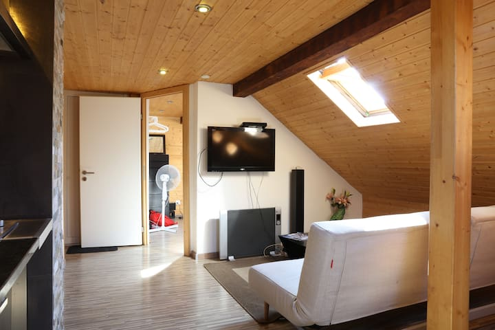 Cozy 1BD Roof Top Studio - Zúrich - Loft