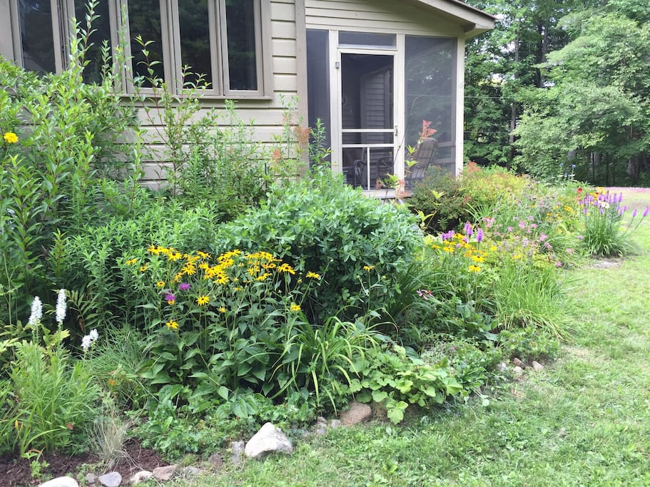 Summer perennial gardens off screened-in porch and around most of the house.