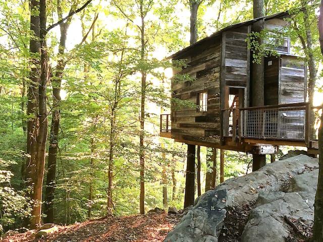 Treetop Hideaways  - Flintstone - Treehouse