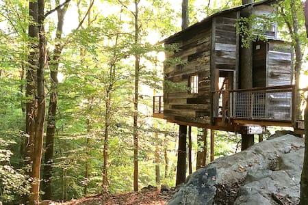 Treetop Hideaways  - Flintstone - Treehouse