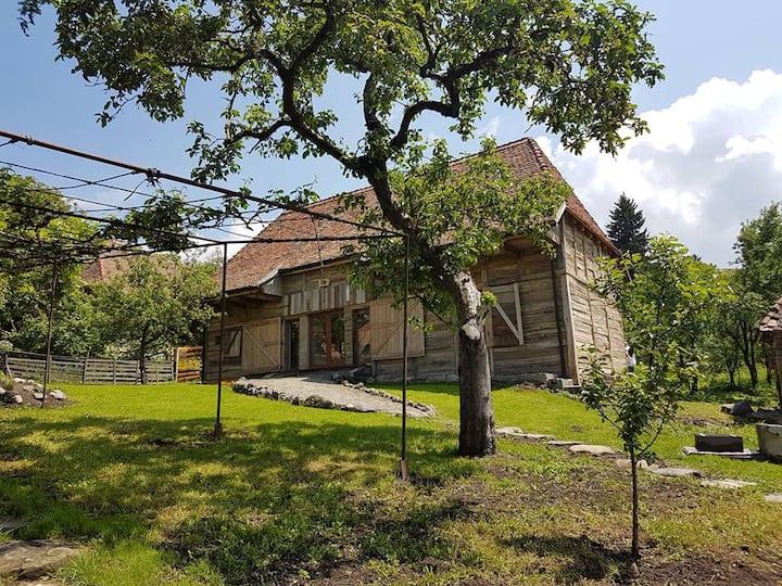 Siklód Völgye Kulcsosházak / Siclod Valley Chalet