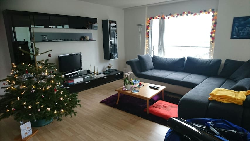 Coco's home - between airport & city center - Zürich - Appartement