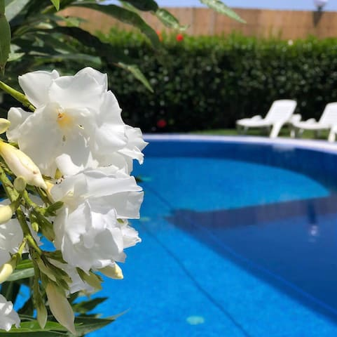 Beautiful villa with swimming pool, for daily rent
