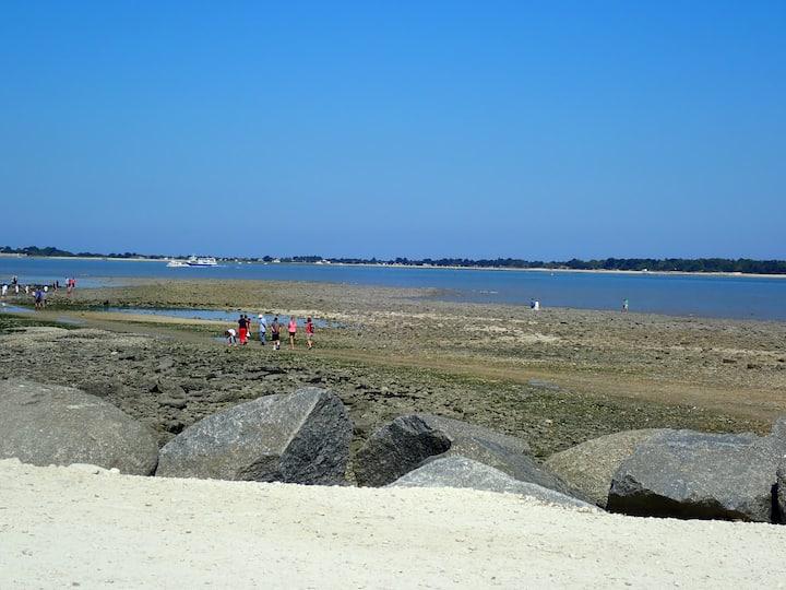 Logement proche des plages et du centre ville.