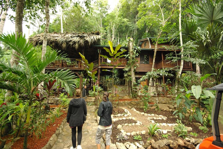 Toucan House Eco- Lodge in Belize - Benque Viejo Del Carmen - Aamiaismajoitus