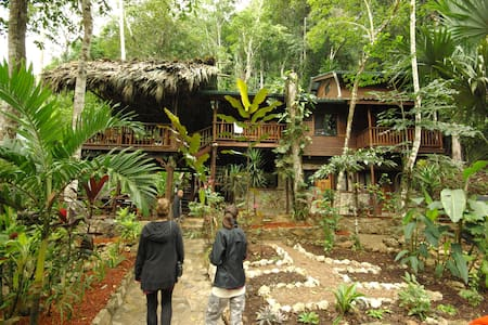 Toucan House Eco- Lodge in Belize - Benque Viejo Del Carmen - 住宿加早餐