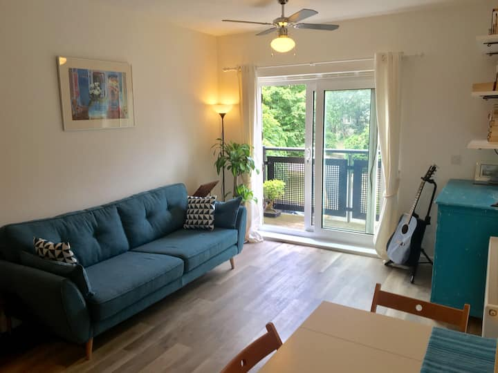 Beautiful one-bedroom apartment in Crystal Palace