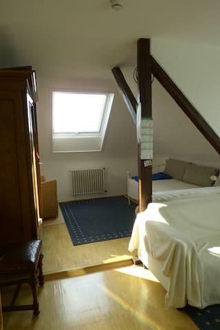 Gemütliches DG-Zimmer Wuppertal-Barmen, Stadtrand - Wuppertal - Appartement
