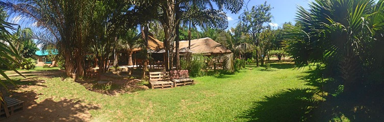 Bongwe's Bar & Guest House - Lusaka - Bed & Breakfast