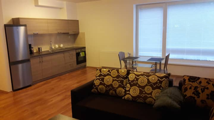 Modern and cosy apartment in the city centre