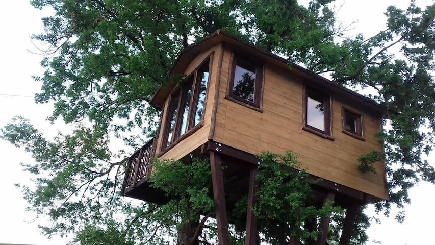 La casa sulla quercia con cena