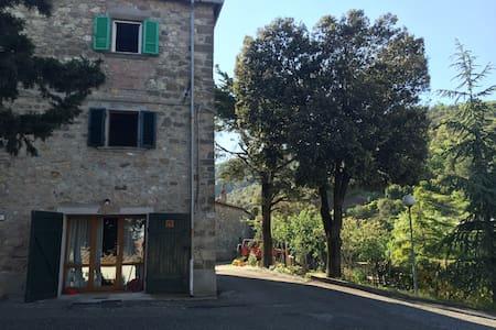 Uscio Pinnocca - Montecatini Val di Cecina