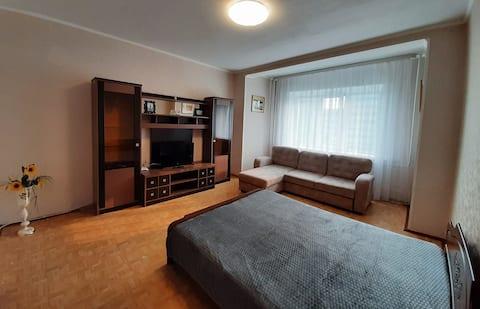 Однокомнатная квартира на проспекте Ленина 62