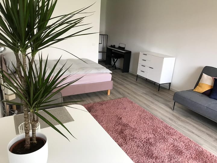 Modern Apartment in Downtown Darmstadt - Apt. 135