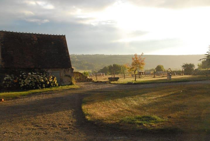 petite maison avec mezzanine - Hérisson