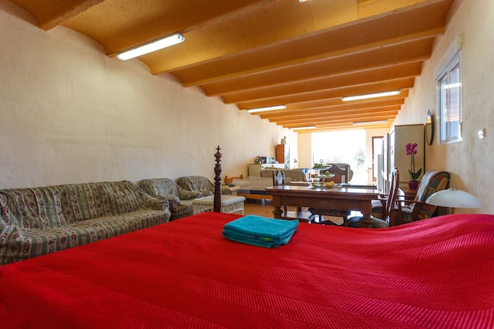 An 80 meter suite in a lovely finca - Palma - Appartement en résidence