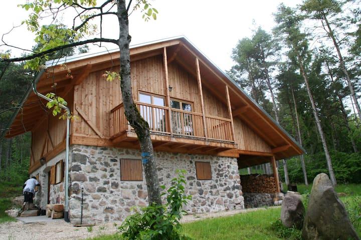 Gemütliches Waldhaus neben Maso Plaz