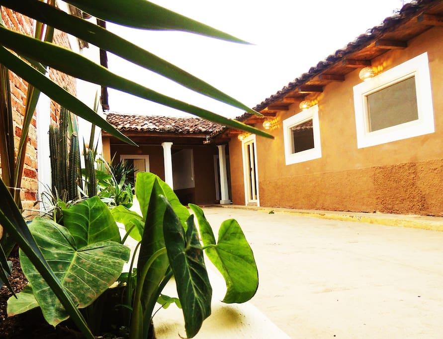 Bienvenidos en la Casa de los Cactus