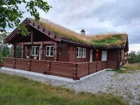 Familiehytte på Høgevarde.