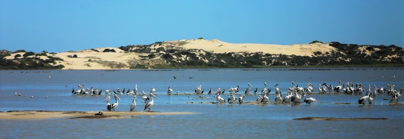 """The Retreat"" @ Mundoo Island Station via Goolwa - Mundoo Island - Rumah"