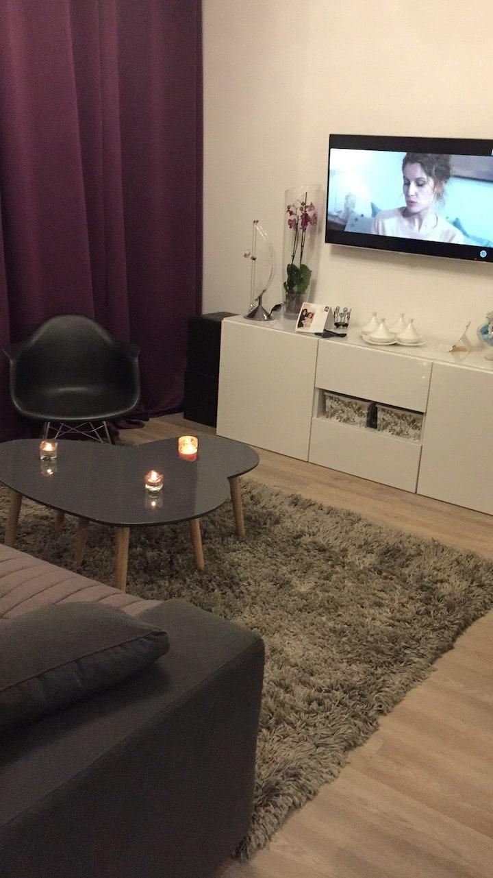 Joli appartement à 5 kms de Lille et 5 min du CHRU