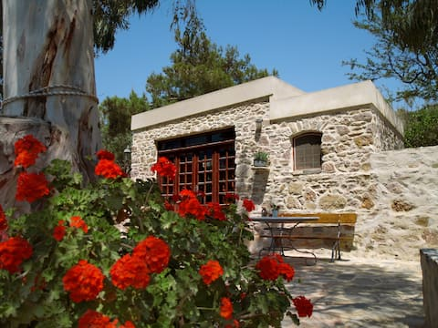 Eucalyptus Studio - Rural accommodation, Syros isl