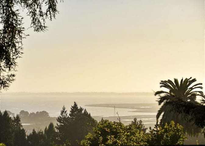 Hillside Home - Steps Away from Redwood Hiking Trails & Views of the Bay!