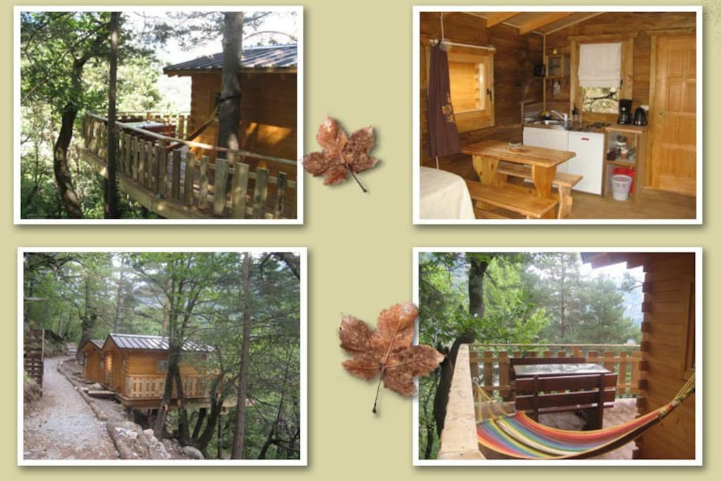 maisons dans les arbres cabanes dans les arbres louer tende provence alpes c te d 39 azur. Black Bedroom Furniture Sets. Home Design Ideas
