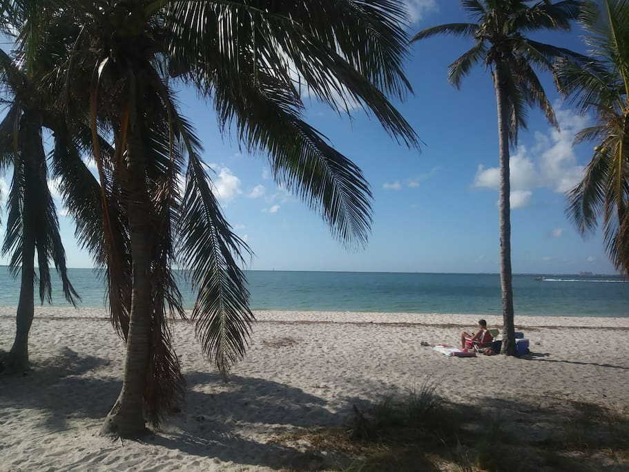 gorgeous key Biscayne relax and soak up the sun under a lazy coco palm