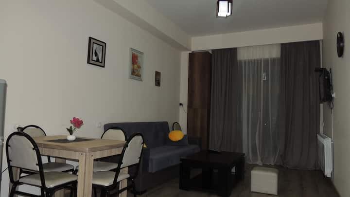 Bakuriani Apartment 11