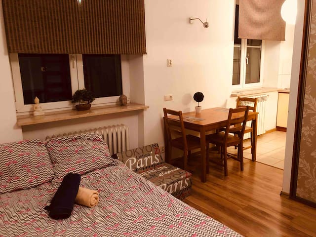 Cosy apartment in the centre! Free parking!
