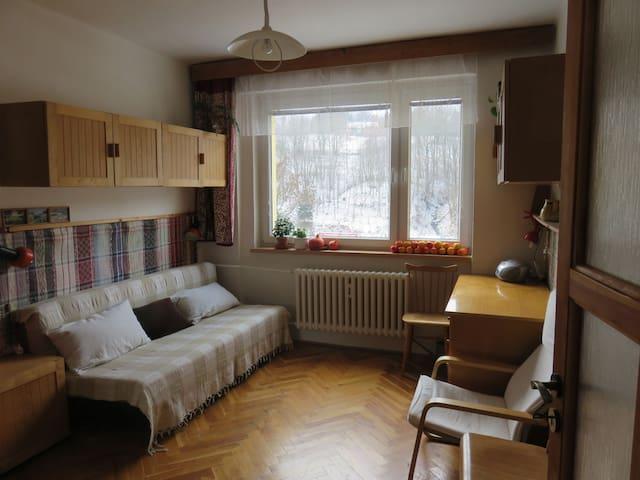 Příjemné místo pod horami - Vrchlabí - Apartment