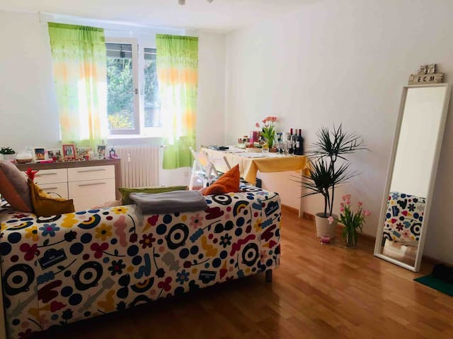 2 Zimmer Apartment in the city center