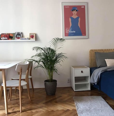 Elegant flat in Prague's coolest neighbourhood