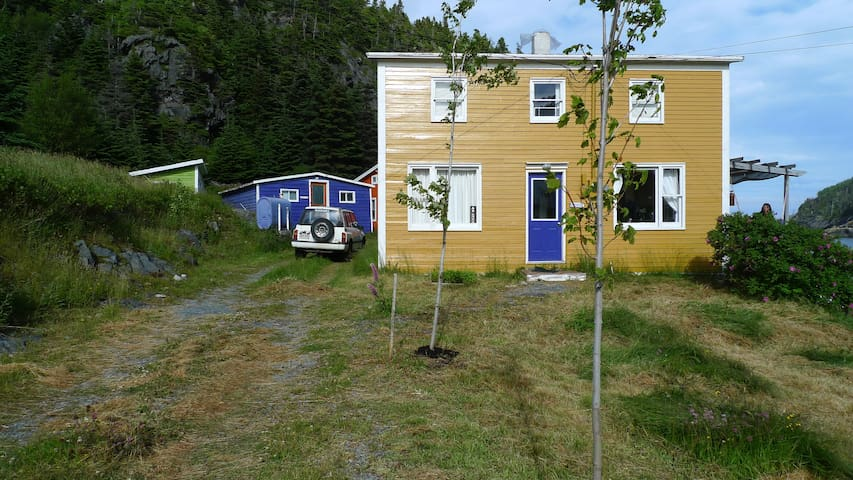 EAST COAST NEWFOUNDLAND COTTAGE