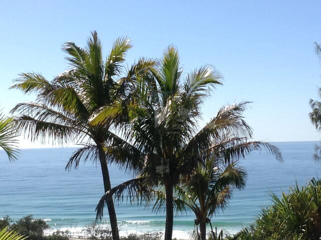The Palm Suite - Sunrise Beach - Talo