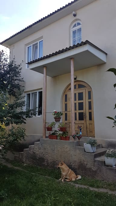 Frontal view of the house